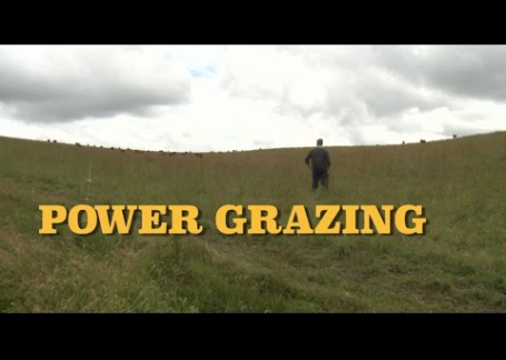 Power Grazing