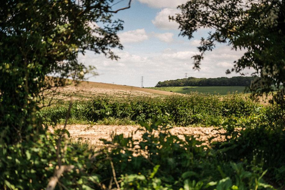 Kingsclere Estates Landscape Soil 185