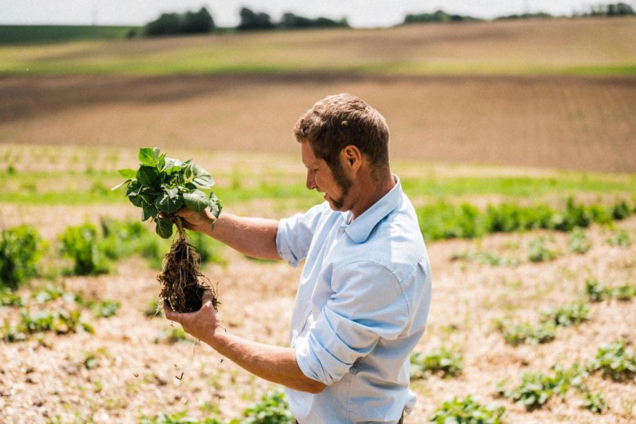 Kingsclere Estates Tim May Soil 133